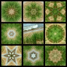 Full 9 Squares Beach Grass 800 x 800 WM